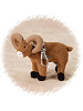 Big Horn Sheep Keychain / Zipper Pull Stuffed Animal by Stuffed Animal House