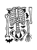 Skeleton Giant Wall Decals Sheet B